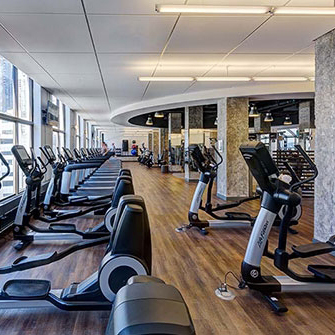Cardio Gym Equipment Insides a Hilton Facility