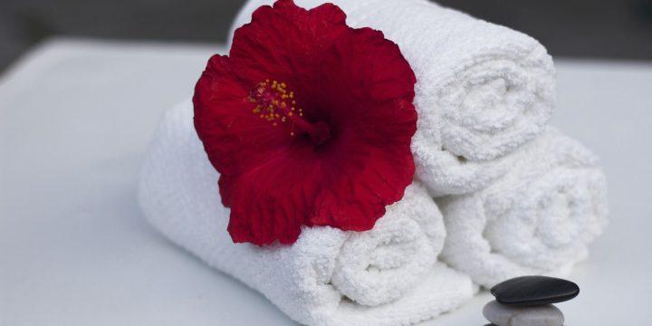 Increase Hotel Bookings by Decreasing Disease Outbreaks