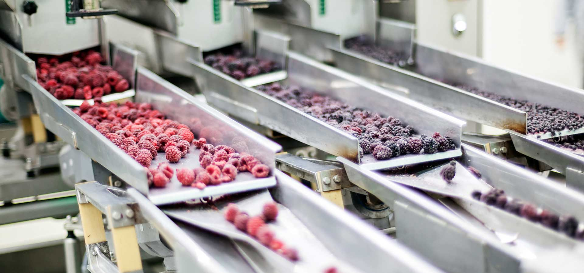 Industrial slide displaying raspberries